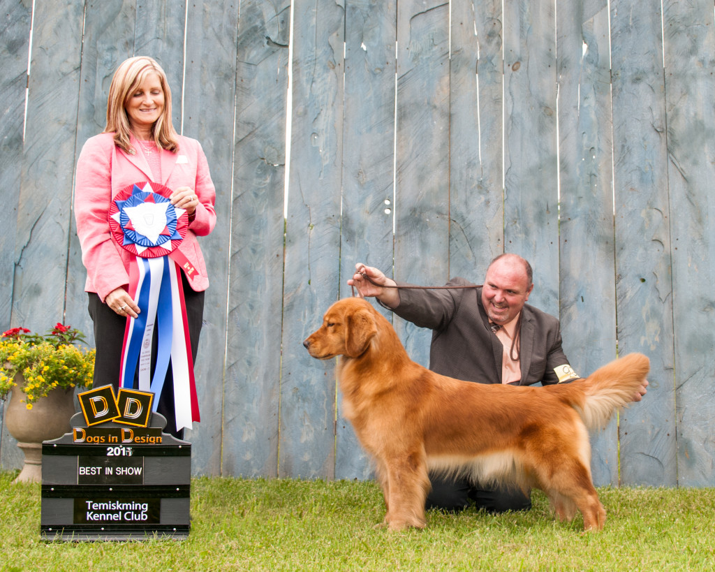 Best in Show at the Temiskaming Kennel Club under judge Avery Gaudin (Canada)