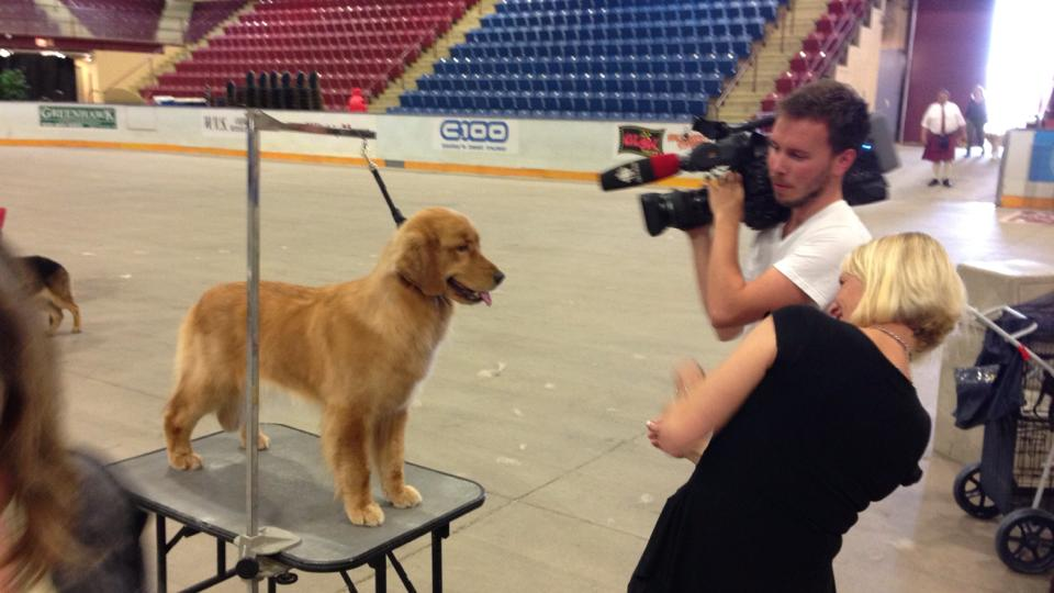 Isla being filmed by the local news station while at the GRCC National