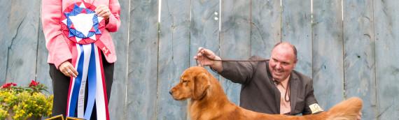 Temiskaming Kennel Club Best in Show!!